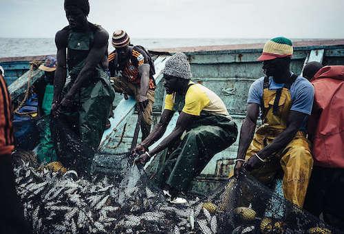 Senegal, Greenpeace denuncia il saccheggio del mare