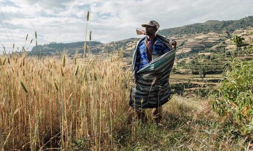 Etiopia, la guerra nel Tigray spiegata dal prof. Uoldelul