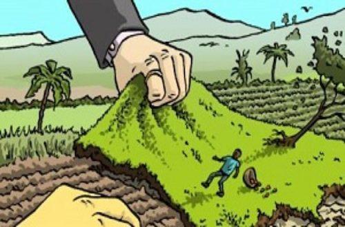 Land grabbing, sempre più mani sulle terre africane